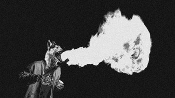 feufeufeu